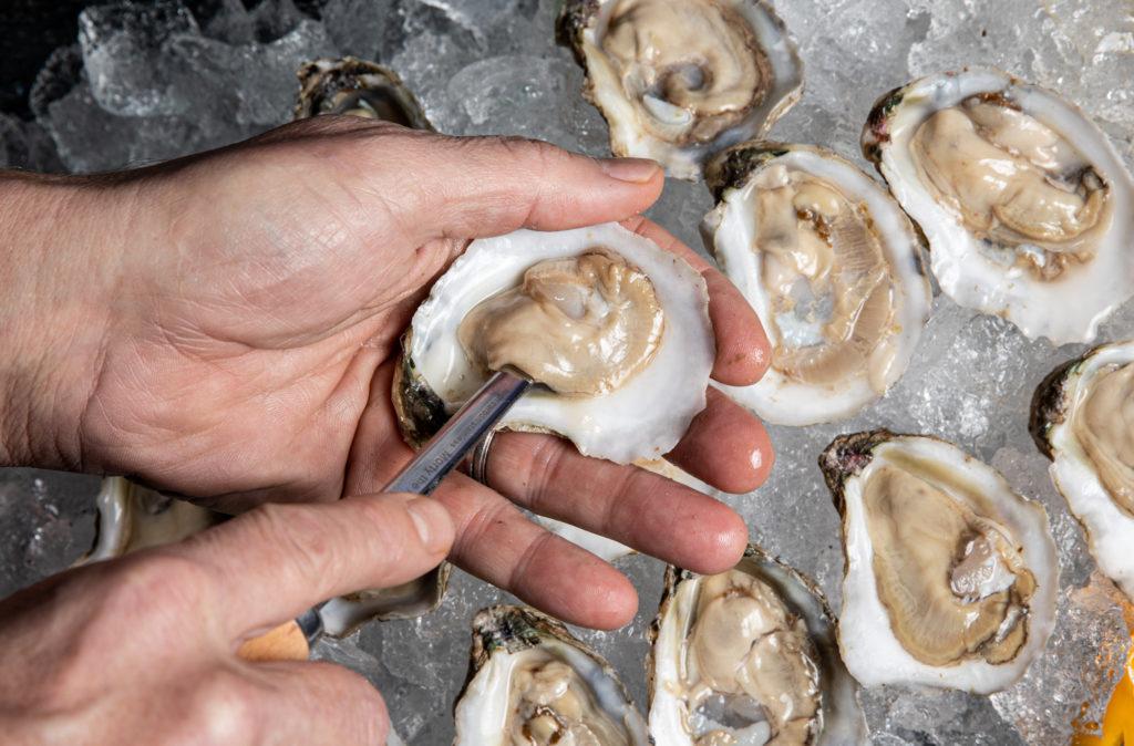 Comment conserver correctement les huîtres fraîches