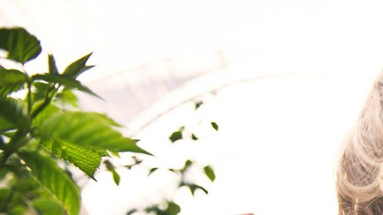 Comment la massothérapie peut-elle aider à soulager vos symptômes d'allergie ?